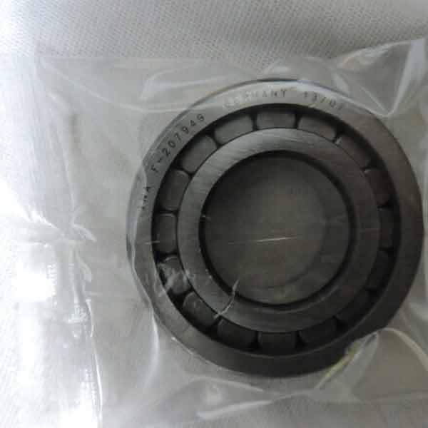 Needle Roller Bearing F-207949